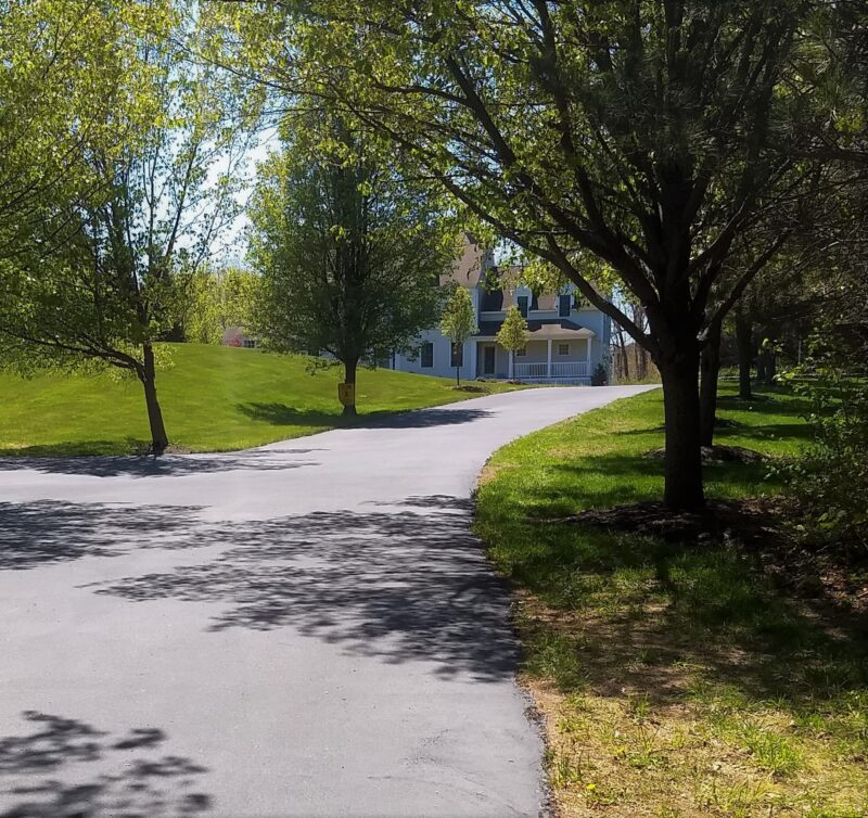 A long tree-lined driveway looks brand new after sealcoating by Cametti